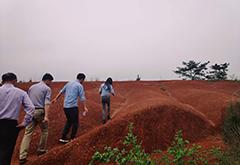 猫先生电竞app团队前往生米镇考察,签约红谷田园项目